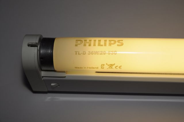Lighting Gallery Net Fluorescent Tube Collection Philips