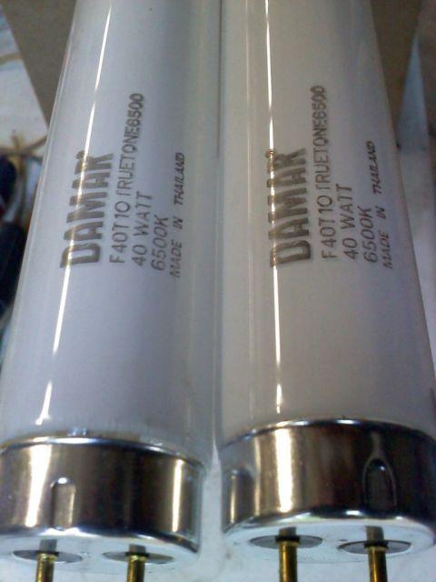 Lighting-Gallery-net - Fluorescent lamps/DAMAR F40T10 TRUETONE 6500