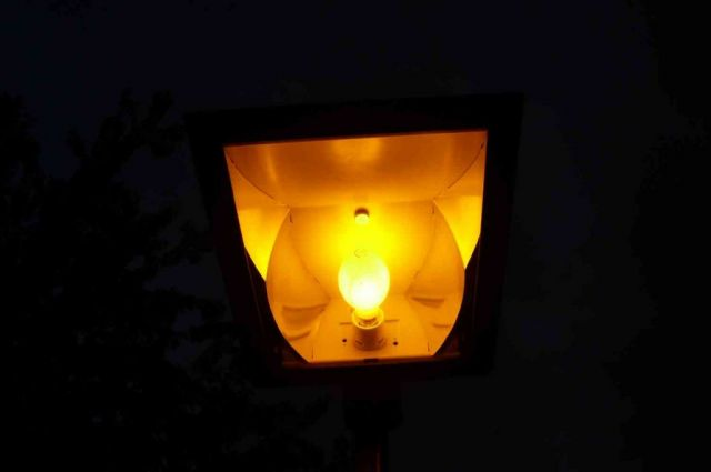 lighting gallery net my lanterns bega 8071. Black Bedroom Furniture Sets. Home Design Ideas