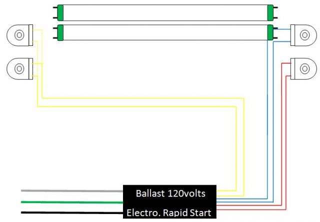 Wiring Diagram Of A Fluorescent Light Ballast : T fluorescent ballast wiring diagram get free image