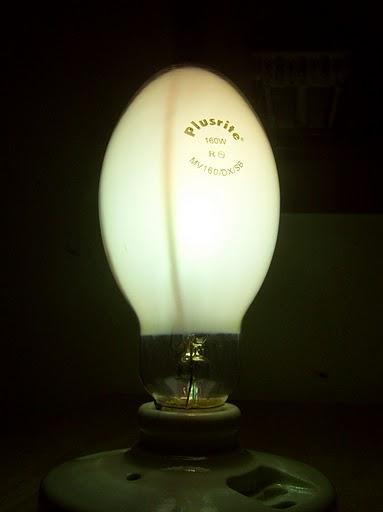 Lighting Gallery Net Lamps Amp Lighting Self Ballasted