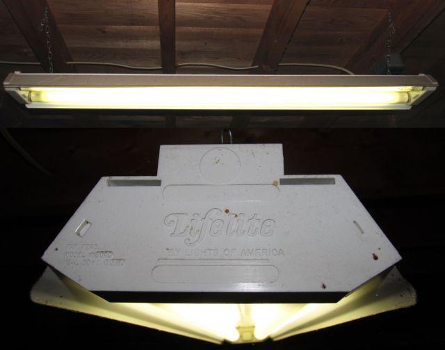 Lighting Gallery Net Light Fixtureslights Of America Lifelite 2x
