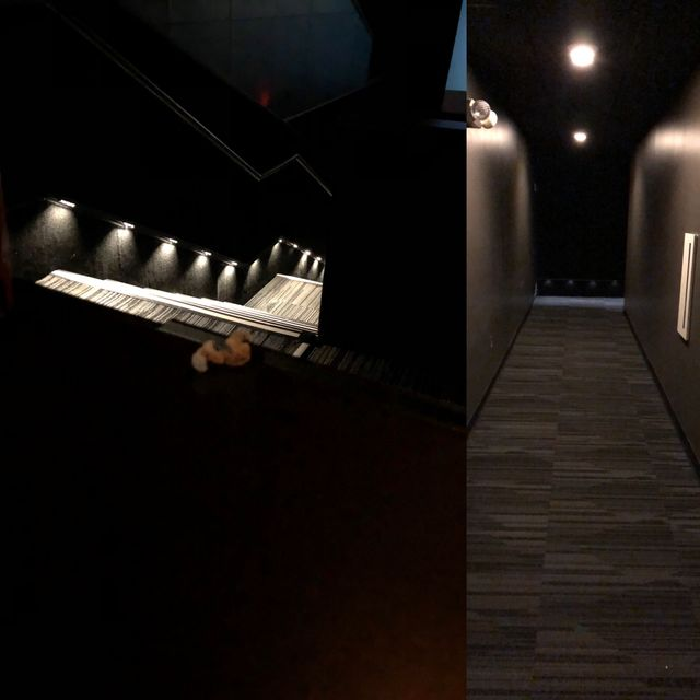 Lighting Gallery Net Led Movie Theater Lighting